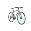 ORBEA Carpe 30 - Vélo de ville - gris